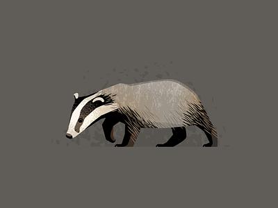 Wildlife Poster - Badger wildlife vector badger animal