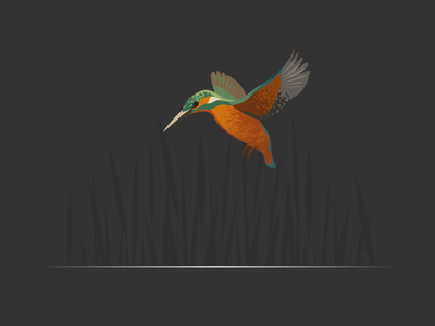 Wildlife Poster - Kingfisher wildlife vector kingfisher bird animal
