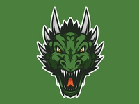 Dragon Head Mascot Logo