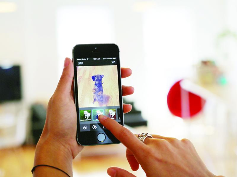 BarkCam app dog photo camera sticker fun