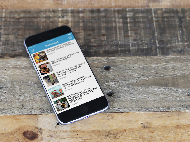 BarkPost app  reading pet dog ux ui app