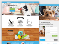 Barkbox site redesign