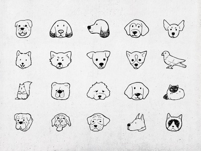 Hand draw icons pigeon cat hand draw line drawing icon