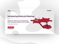 Introducing Molecule Meetings