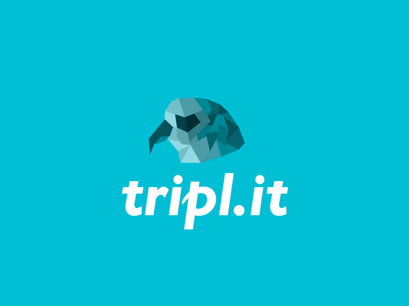 Logo for tripl.it falcon low poly poly sketch app icon logo