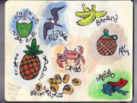 Tropical spot illustrations