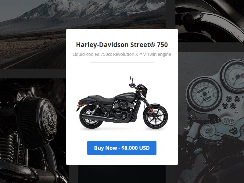Bike Splash gallery motorcycle bike shop dev templates email templates emails responsive email