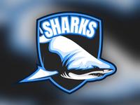 • Sharks 🦈 •