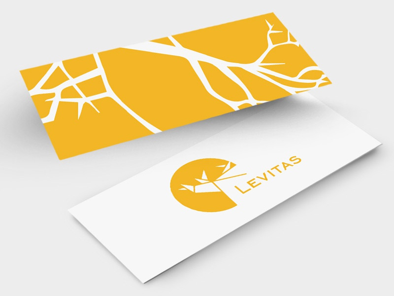 Slim business card for levitas by liv andare dribbble slim business card 1 colourmoves
