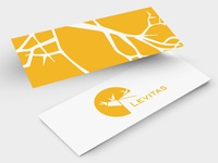 Slim Business Card for Levitas