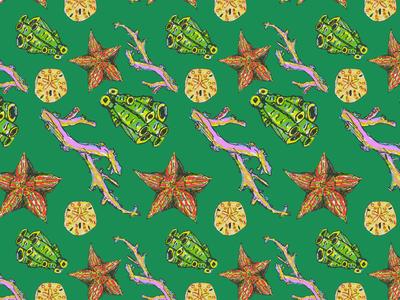 Sea Creature Patterns