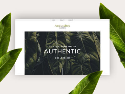 Augustina PageCloud Template