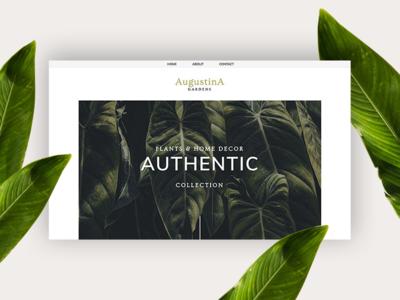 Augustina PageCloud Template content website builder web design modern blog layout blog gallery template web app type typography design pagecloud