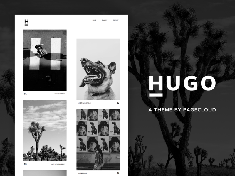 Hugo Pagecloud Template whitespace clean classic modern website builder web design theme template pagecloud portfolio photography gallery design layout content web app
