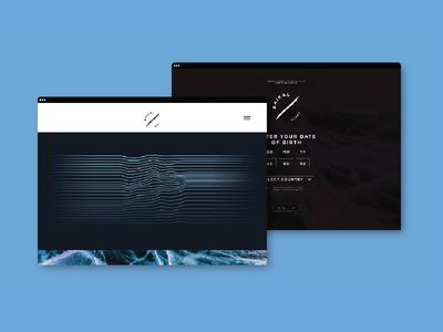 'Baikal Vodka' web concept