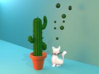 Cat & cactus