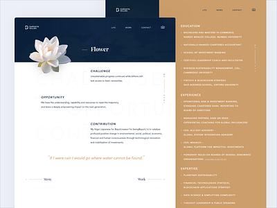 Portfolio Website Design - UI/UX responsive design web visual identity visual landingpage landing lotus identity app ux uiux designer website uidesign ui design