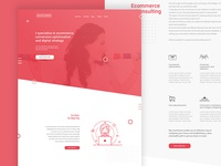 E-Commerce Consultant Landing Page