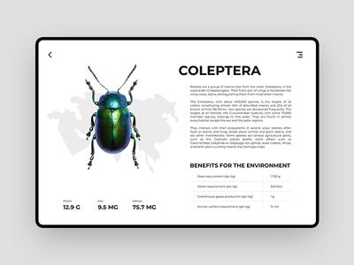 Single Page | Food Alternatives alternative ants food interface website minimal landing page design web ux ui