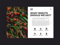 Transition between pages | Food Alternatives landing page animation alternative ux ui design ants food interface website minimal