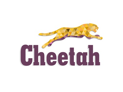 Cheetah with shapes