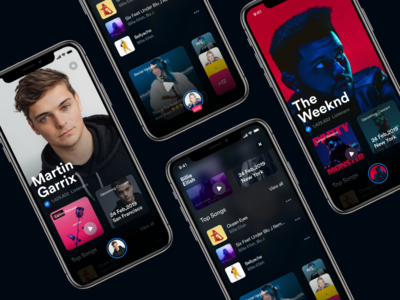 Artist Page music iphone ux ui