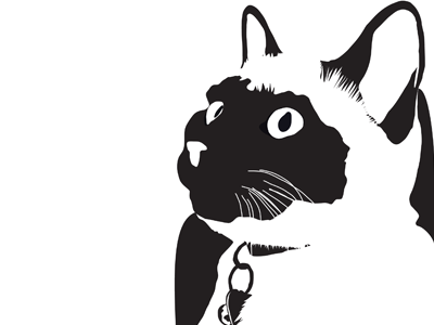 My Cat in black and white black and white simple cat illustration art vector
