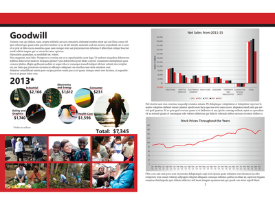 Mock Annual Report - Second Spread infographics layout design annual report design