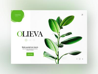 Clean & Green Website Design webdesign branding flat typograpgy font responsive fullwidth green white clean inspiration design ux ui web design website nursery plant based plant plants