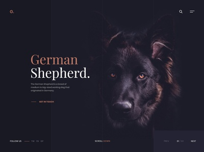 German Shepherd Website Design