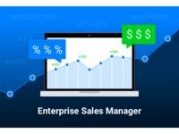 Enterprise Sales Manager position graphic