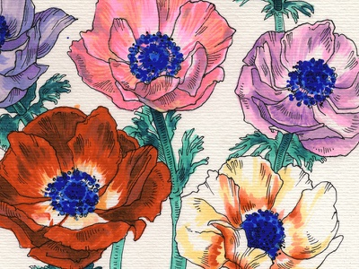 Poppies poppies ink copics markers traditional illustration