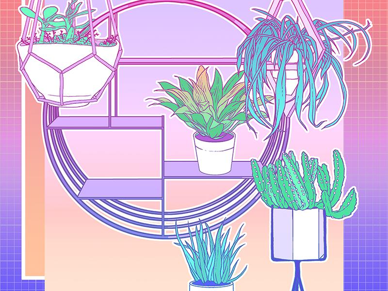 Plants By Ania Gareeva On Dribbble