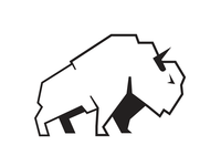 Bison Data & Communications logo mark