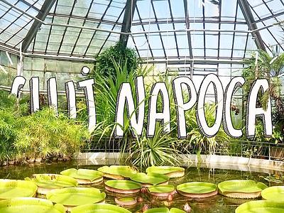 Cluj-Napoca botanical mixed media doodle