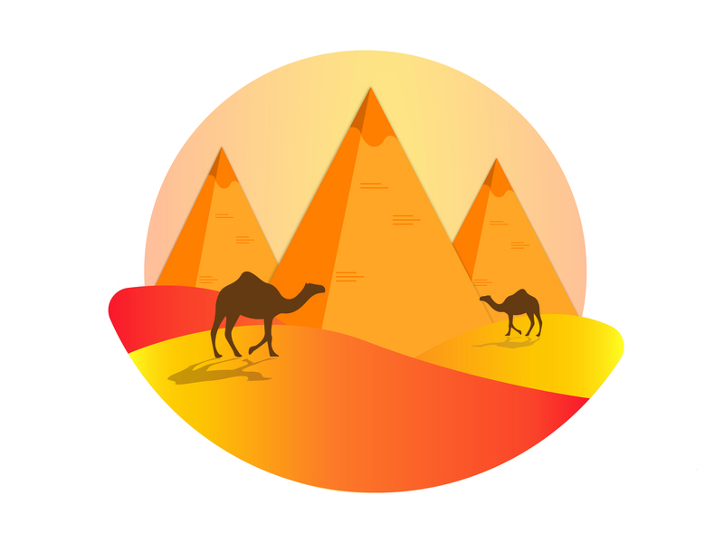 Egypt sand dunes build pyramids egypt flat desert illustration vector day camel