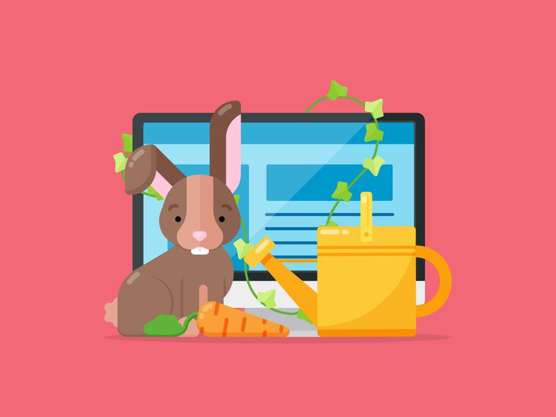 Website Growth (Plus a Rabbit!)