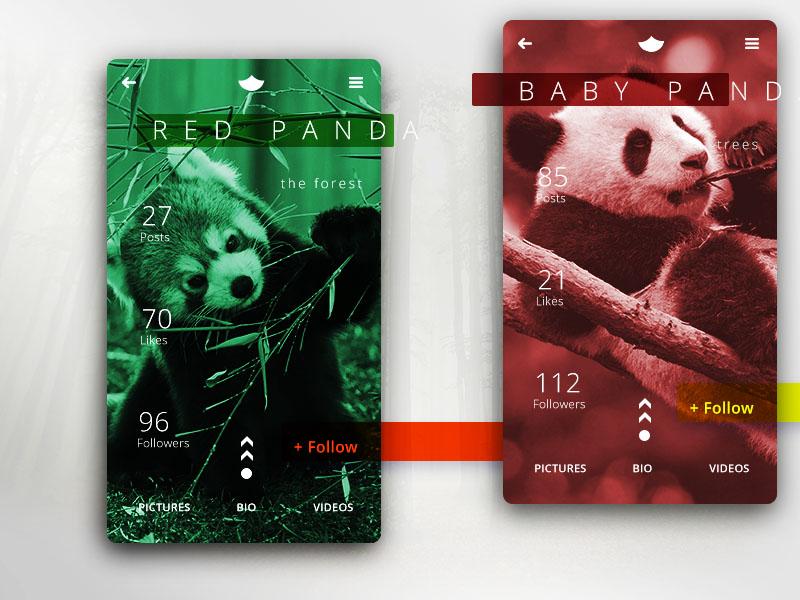 Ui006 - User Profile 006 redpanda panda profilepage profile user userprofile dailyui