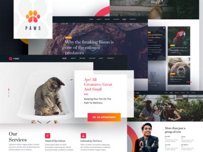 PAWS Veterinary Website in Adobe XD