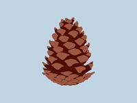 Pinecone Icon
