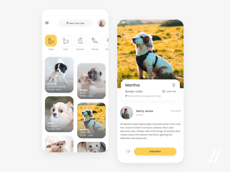 Pet Adoption App cat dog owner animals adoption pet product purrweb mobile app ui ux figma design
