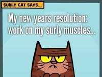 Surly cat resolution2