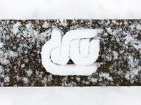 Snow שלג