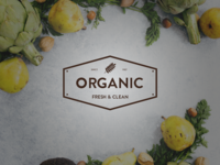 Rostamthedesigner Organic Logo