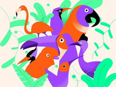 Birds 🐦 draw animals plants nature birds uidesign flat design flat  design flat illustration design illustration
