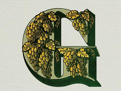 G-Initial ... vectorgraphic vector illustration vector typo g alphabet letter logo initial monogram typogaphy