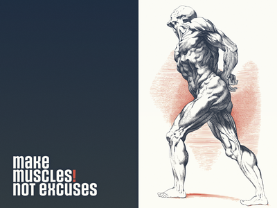 Muscles ... anatomy drawing muscles body vectorart vector illustration illustration vector graphic type typography typo