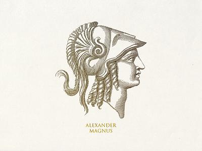 Alexander Magnus head vector graphi illustration line art linework lineart vectorart vector illustration