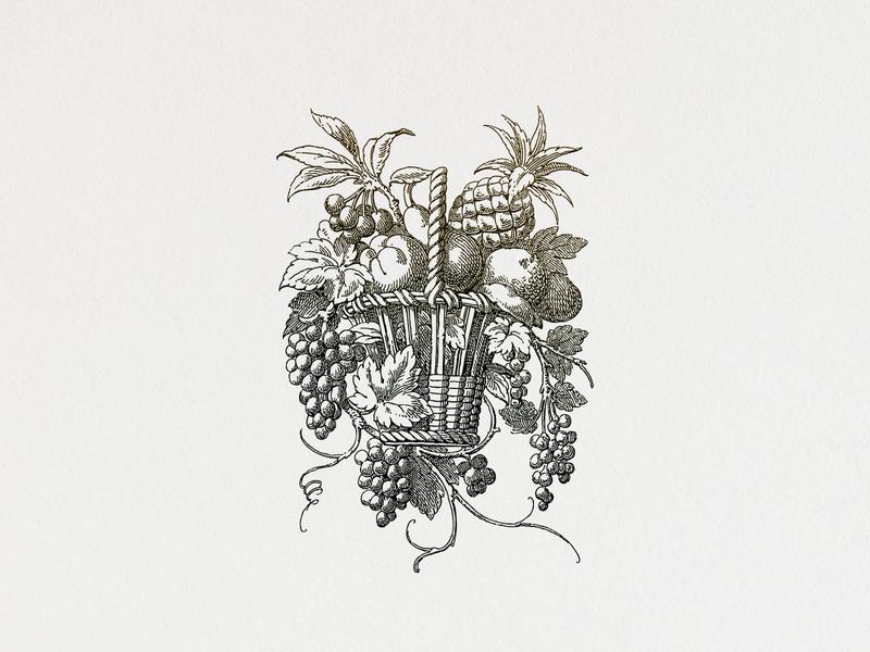 Fruit Basket ... fruits vector graphic illustration vector illustration