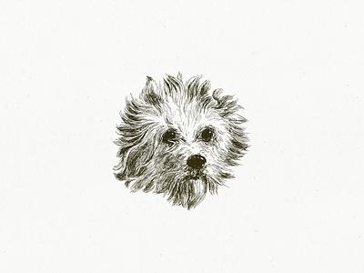 Friend Fritz ... drawing illustration dog vector graphic vector art vector illustration